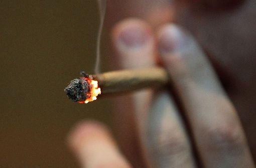 Sechs Kilogramm Marihuana im Tank