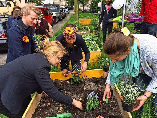 Bienen als Ehrengäste beim Urban Gardening