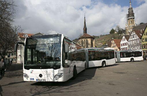 Der SVE plant,  zu 100 Prozent mit Elektrobussen zu fahren. Foto: Horst Rudel