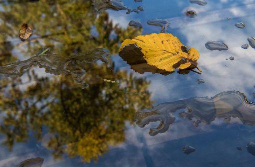 Auf stürmisches Herbstwetter folgt Besserung