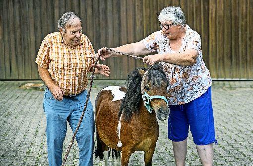Mehr als 50 Jahre in Pflegefamilie