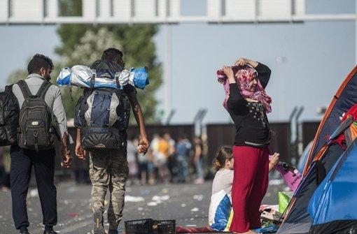 Ungarn baut weiteren Grenzzaun