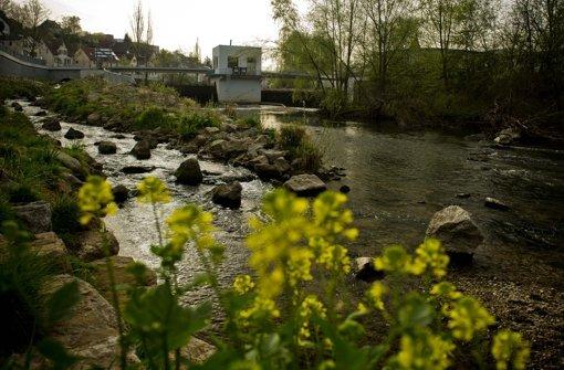 Gartenschau-Machern winkt Finanzspritze