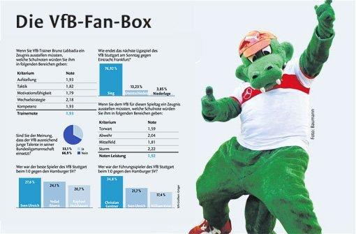 Die VfB-Fan-Box zum 9. Spieltag