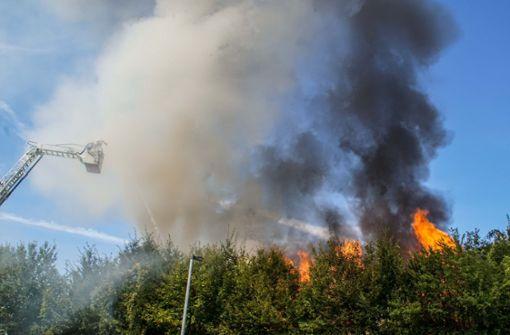 ... ist ein leer stehenden Wohnhaus   völlig ausgebrannt. Foto: SDMG