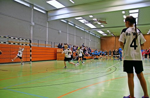Derzeit steht die Sporthalle am Spechtweg für den Vereinssport und für den Sportunterricht des Solitude-Gymnasiums zur Verfügung. Foto: Archiv Martin Braun