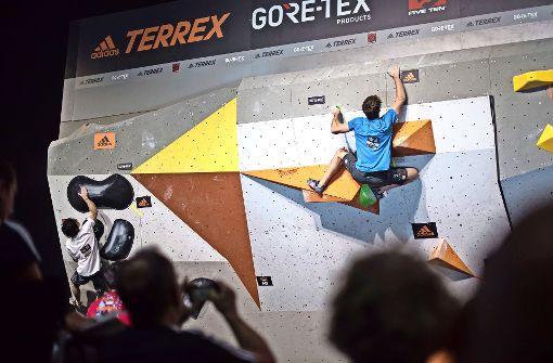 Kletterstars springen um die Wette