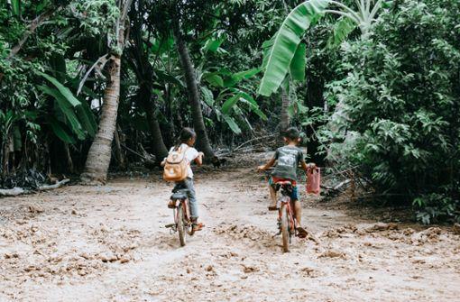 Der Ho Chi Minh Trail: Eine Radtour auf diesem geschichtsträchtigen Pfad sorgt für gemischte Gefühle. Einerseits ist man überwältigt von der schönen Natur, andererseits wird man mit der traurigen Vergangenheit des Vietnam Krieges konfrontiert.  Foto: Pixabay