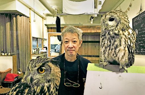 "Motohiro Mizuhara betreibt das Eulencafé ""Hoot Hoot"" in Tokio. Foto: dpa"