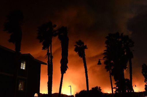 Das Feuer zwingt Zehntausende Menschen zur Flucht.  Foto: dpa