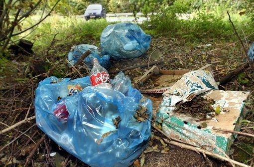 Müll in den Wald gekippt