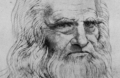 Offenbar neue Zeichnung von da Vinci aufgetaucht