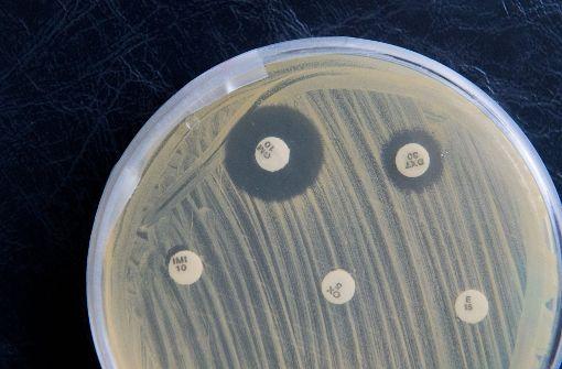 Gefährliche Keime im Krankenhaus verursachen zahlreiche Todesfälle. Foto: dpa