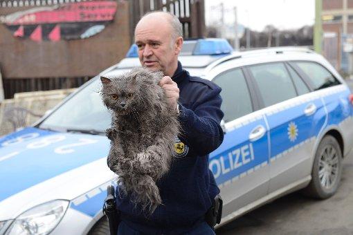 Lothar Hubl vom Tiernotdienst der Stadt Stuttgart mit der Katze, die vermutlich über Tage in einem Altkleidersack steckte. Foto: www.7aktuell.de/Oskar Eyb