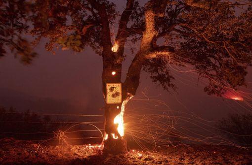 Seit Wochen wüten an verschiedenen Orten in Kalifornien schwere Waldbrände. Foto: dpa