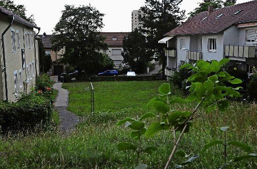 Am Molchweg sind neue Wohnungen geplant