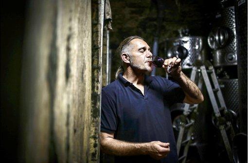 Stiller Genuss im über 500 Jahre alten Weinkeller: Für den Wengerter Tilmann Ruoff werden die kommenden Tage beim Stuttgarter Weindorf etwas hektischer. Foto: Leif Piechowski
