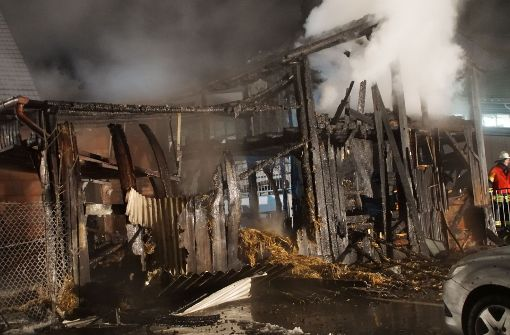 150 Hühner verenden in brennendem Stall