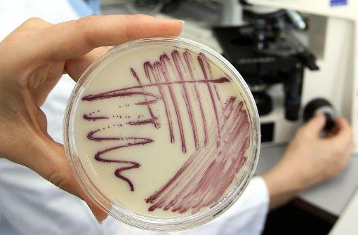 Eine Petrischale mit MRSA-Keimen Foto: dpa