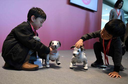 """""""Aino"""" ist das japanische Wort für Begleiter oder Freund. Die Kinder nehmen das unechte Tier spielerisch an... Foto: AFP"""