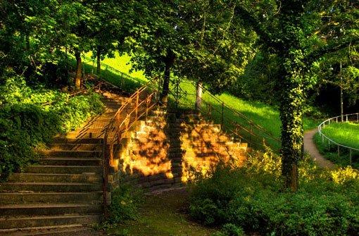 Die bSünderstaffel/b an der Gänsheide wurde schon im 14. Jahrhundert erwähnt. Wie die 260 Stufen zwischen Pfizer- und Diemershaldenstraße zu ihrem Namen gekommen sind, darüber scheiden sich die Geister: Während die einen meinen, die Staffel sei nach einem Wengerter namens Sünder benannt, der seine Weinberge an der Diemershalde hatte, ... Foto: Leserfotograf grekop