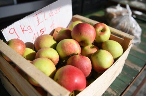 Nach Vorjahresfrost werden hiesige Äpfel knapp