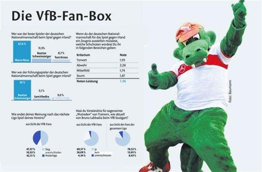 Die VfB-Fan-Box zum 8. Spieltag