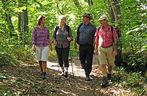 Viele Landschaftsformen prägen die Schwäbische Alb, zu der auch das Nördlinger Ries gehört Foto: Schwäbischer Alb Tourismusverband