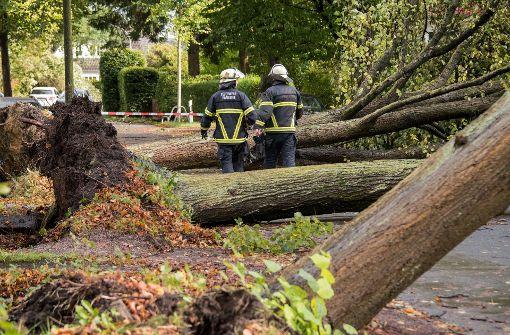 """Sturm """"Xavier"""" fordert Todesopfer und legt Zugverkehr lahm"""