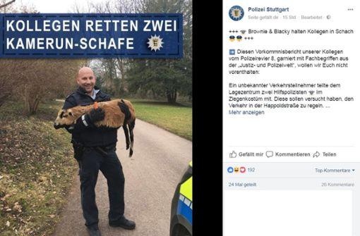 Polizisten retten zwei Schafe in Not