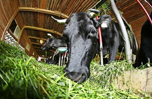Finanzspritze für den Ökolandbau