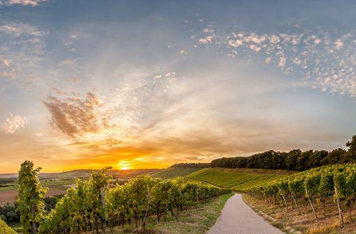 Kraichgau-Stromberg: Über 1.000 Hügel auf zwei Rädern