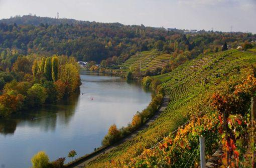 So golden ist der Herbst in Stuttgart