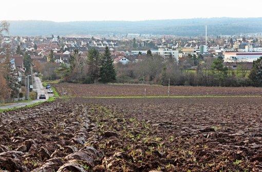 Gutachten: kein Stau durch Korntal-West