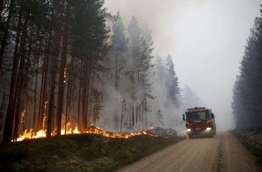 Waldbrände völlig außer Kontrolle