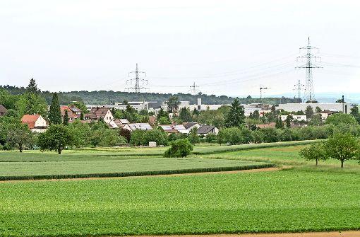 In welchem Ort   wächst Ditzingen weiter?