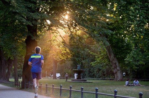 Fitness an der frischen Luft