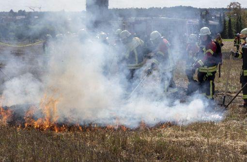 Für die Übung wird ein Stoppelfeld in Brand gesteckt – es qualmt gewaltig. Die Einsatzkräfte verwenden Patschen, Spaten und Harken, um das Feuer zu bekämpfen. Foto: factum/Weise