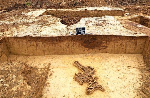 Drei Skelette und viele offene Fragen