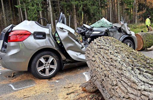 Förster trifft keine Schuld am   Baumunfall