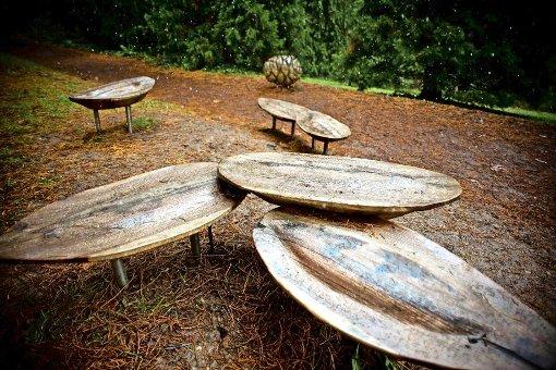 Sitzgruppe im Mammutwäldchen Foto: Lichtgut/Max Kovalenko