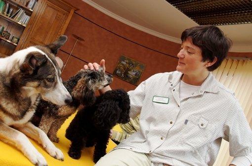 Sozialpädagogin Anette Bull mit ihren Therapie-Hunden. Foto: