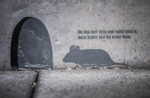 Eine Aufschrift an der Wand zeugt vom Drang nach Freiheit in der JVA Stammheim. Foto: Lichtgut/Max Kovalenko