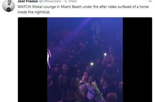 Pferd mit halbnacktem Model geht in Nachtclub durch