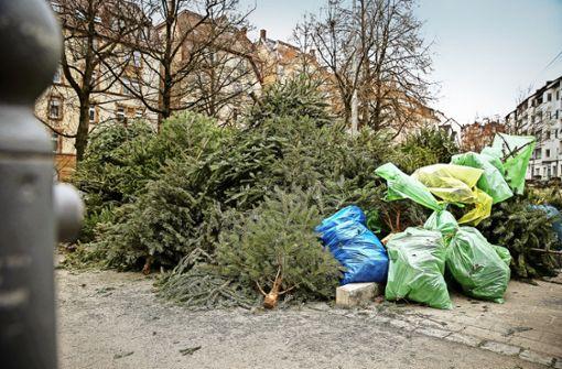 Weihnachtsbaum stuttgart entsorgen