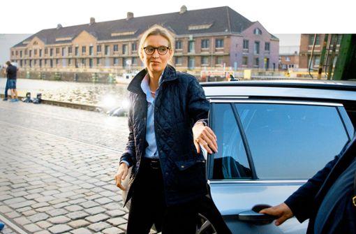 Landesschatzmeister Kral belastet Weidel und ihren Kreisverband Bodensee