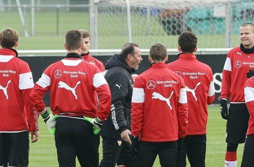 Huub Stevens rüttelt den VfB wach