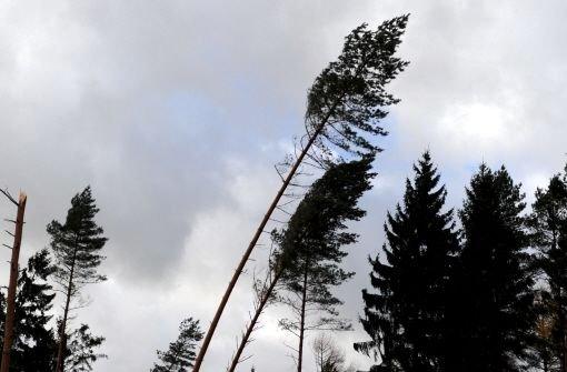 Sturm Baden Württemberg