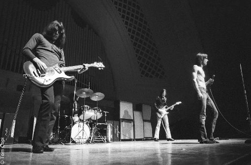 Der bloße Oberkörper auf der Bühne wurde früh Iggys Markenzeichen. Foto: Studiocanal