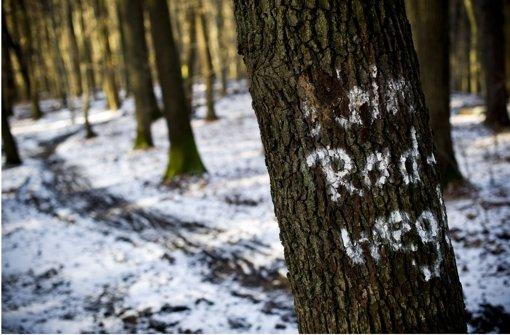 Die Esslinger Nordschleife ist für Mountainbiker gesperrt worden. Foto: Max Kovalenko